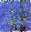 Blue_water_lilies_2