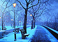 Winter_at_riverside_3